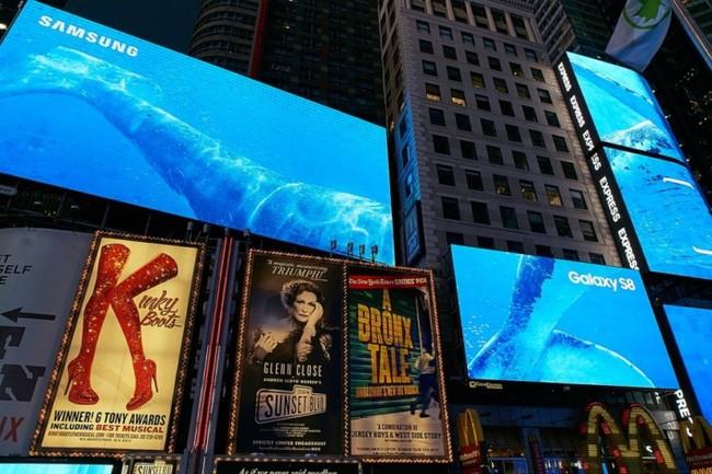Cả Quảng Trường Thời Đại đã tràn ngập màu xanh từ quảng cáo Samsung.